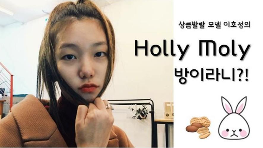 'Holly Moly 방이라니?! '모델 이호정