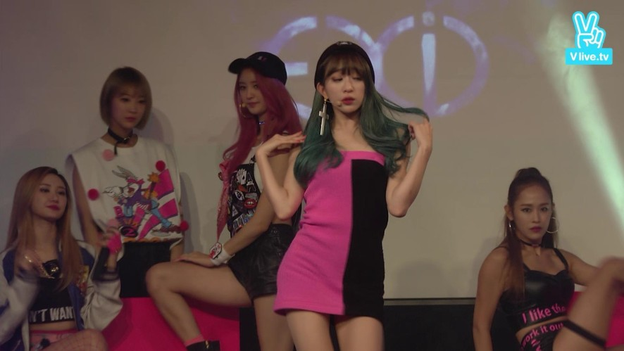 [V] 'HOT PINK' LIVE - EXID Guerrilla Fan Meeting