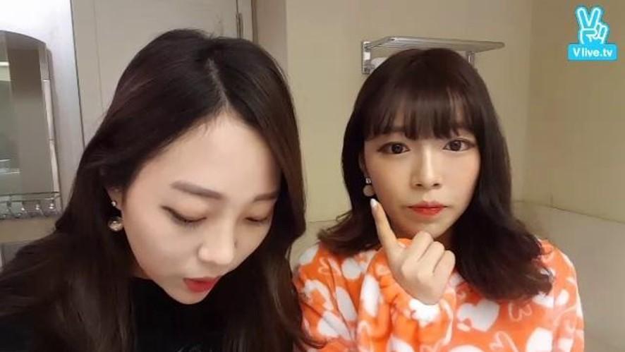 예니 제주도 왔어요 ❤ 여행용 파우치캐리어 공개