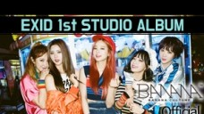 [EXID(이엑스아이디)] 1ST STUDIO ALBUM [STREET] HIGHLIGHT VIDEO