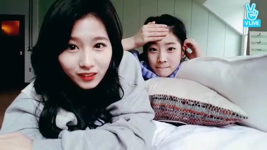 [TWICE] 오늘자 김사나와 지효의 고추카레(Sana's Korean&Jihyo's Japanese)