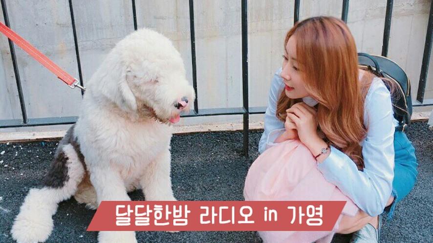 달달한 밤_ 라디오in가영 4