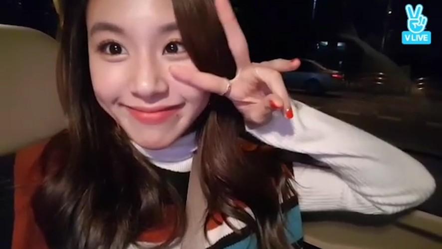 [TWICE] 내가 앓다죽을 애기맹수😭(Cutie Chaeyoung)