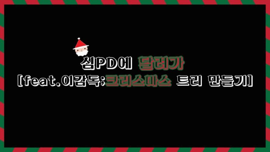 심PD의 달려가 feat.이감독 - 크리스마스 트리 만들기편