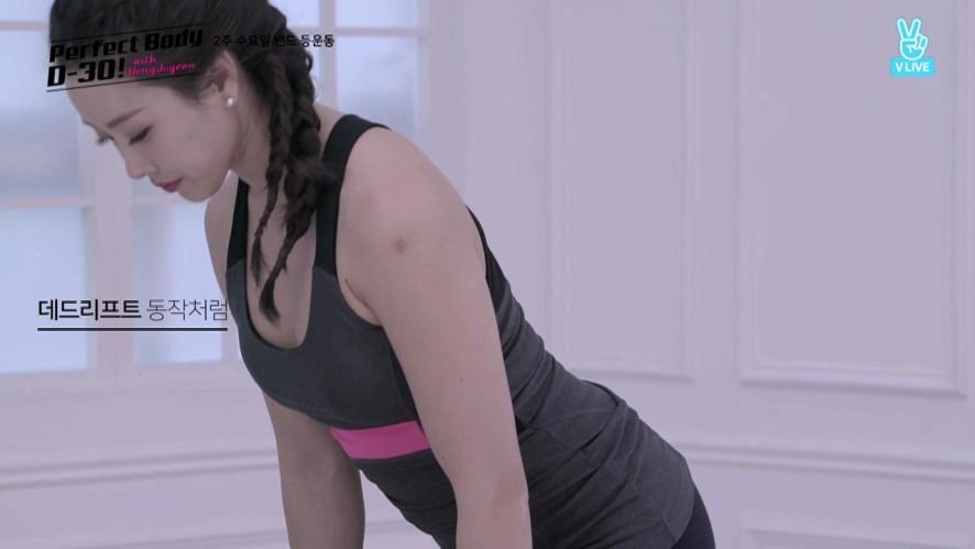 [상체 Upper Body] 2주 수요일 밴드 등 운동 D-19 Back Exercises