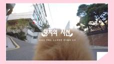 [스타캐스트] '덩치 엄마' AOA 설현♥반려견 덩치와의 하루 (엔젤스노트⑤)