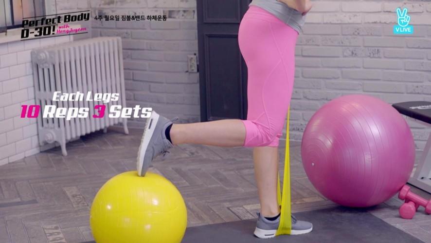 [뒷모습 Back] 4주 월요일 짐볼&밴드 하체운동 D-7 Gymball and Band Exercises