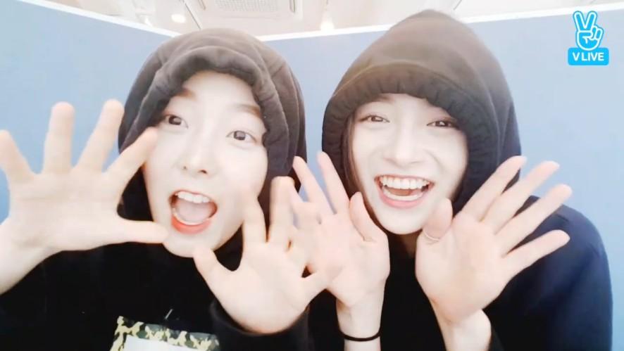 [PRISTIN] 98비글즈 앙~ (Charming Eunwoo&Pinky)