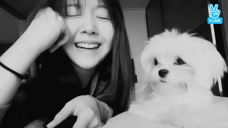 [Girl's Day] 방민아+방공돌=우주최고귀여움🐶  (MinAh with her dog)