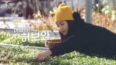 이연희(Lee Yeon Hee)의 봄의 화반(Flower Bibimbob)_Teaser #2