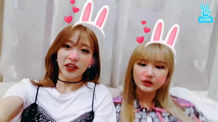 베트남 하노이에서 깜짝 브이앱!!!
