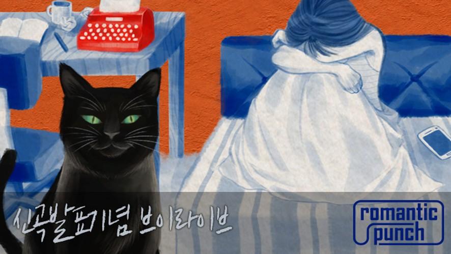 [로맨틱펀치]신곡Zzz발매기념 브이라이브