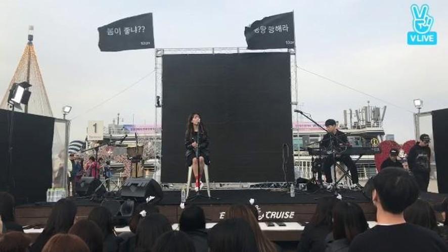 2017 올해도글렀나봄 페스티벌(10cm, CHEEZE, 하상욱)