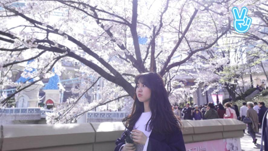 [앤씨아] 다시보고싶은VLIVE : 노래방왔소은~♪