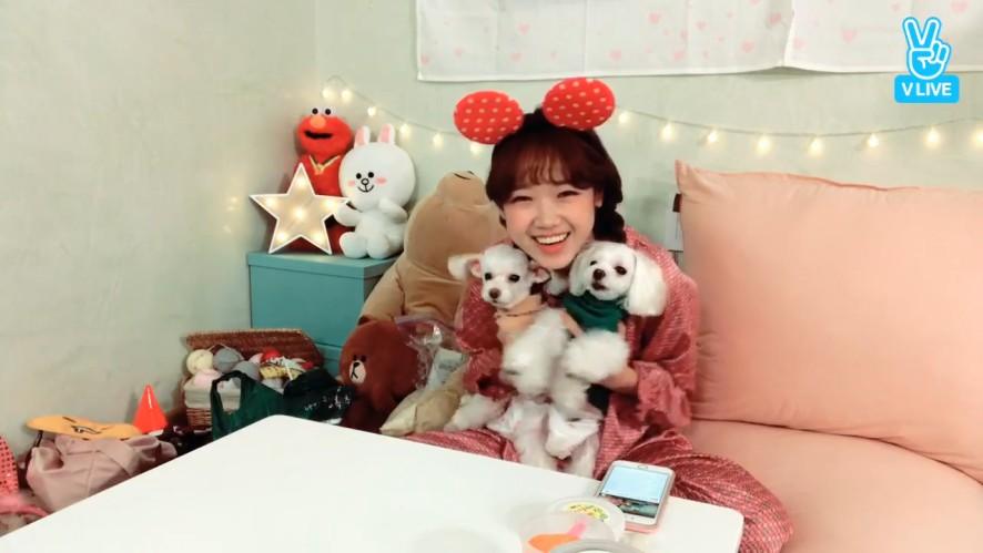 [i-Teen Girls] 복덩이들 세상 제일 귀엽다🐶 (YooJung with her puppies)