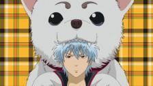 [고다쿠 3.5 확장판] 12화 - 현실에 있다면 키우고 싶은 애완동물은? (GODAKU 3.5)