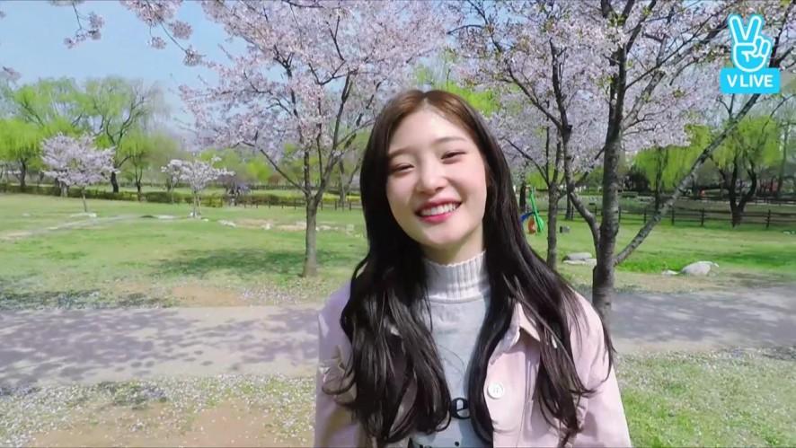 [DIA] 채연 휴대폰 번호 공개