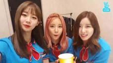 베리굿(Berrygood) - 안무영상 촬영장을 소개합니다💕