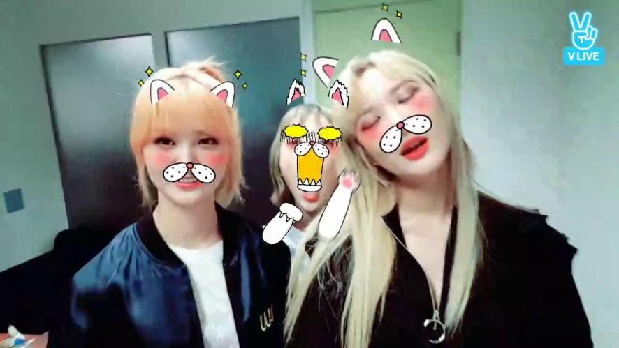 EXID 쇼챔 1위 감사합니다!!❤❤