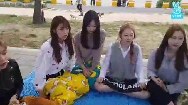 모모랜드의 한강 나드~으리~! (여름 참여)