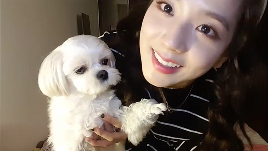 [V PICK! MOMENTS] 집사적 모먼트🐶🐱 (Weekly PET LOVER Moments)