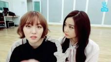 헬로비너스 5주년추카방송 뢈&앵