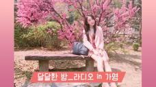 달달한 밤_라디오in가영 #22