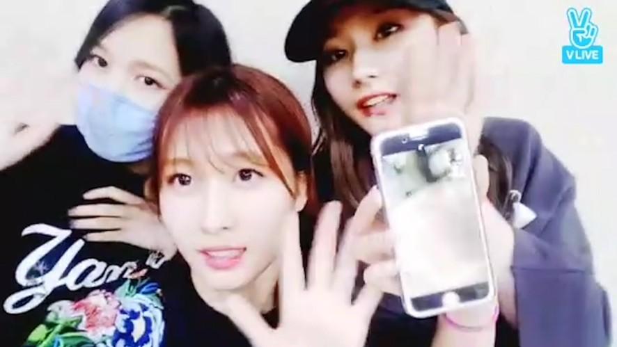 [TWICE] 새벽까지 퇴근 못한 미사모와 둡의 영상통화📞 (MiSaMo video calling with Dahyun)
