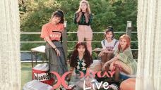 [DAY LIVE] #7. DAYDAY(데이데이) 데뷔 프로젝트 가동!