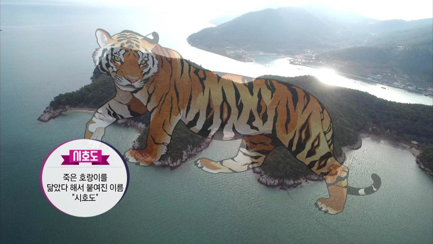 통하는여행 전라남도 고흥편 3회