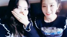 [Red Velvet] 부싼초밥즈🍣 소리질러~! (Yeri&Seulgi's V in Busan)