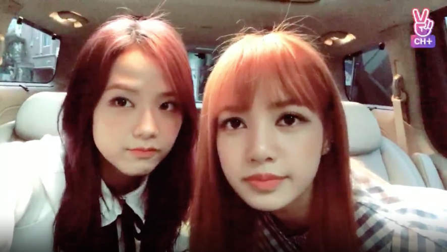 [CH+ mini replay] 잠깐와쪙😽💖 We are only here for a short time