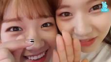 [Weki Meki] 엘댕 음색 모르는 사람 없게 해주세요(˃̥̥ω˂̥̥̥) (Yoojung&Elly singing songs)