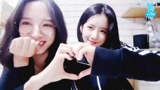 [WJSN] 투닥거리는 엑뽀 짱 귀엽찡❤(So cute EXY&Bona)