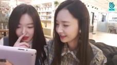 [달샤벳] 세리&우희 힐링타임🐶
